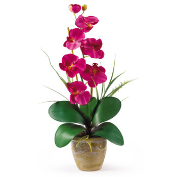 Single Stem Phalaenopsis Silk Orchid Arrangement - SKU #1016