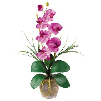 Single Stem Phalaenopsis Silk Orchid Arrangement - SKU #1016-MA