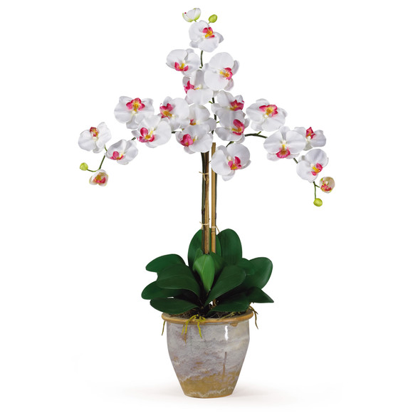 Triple Stem Phalaenopsis Silk Orchid Arrangement - SKU #1017 - 2