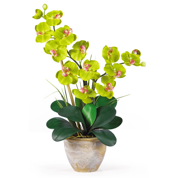 Double Stem Phalaenopsis Silk Orchid Arrangement - SKU #1026 - 7
