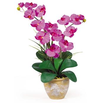 Double Stem Phalaenopsis Silk Orchid Arrangement - SKU #1026