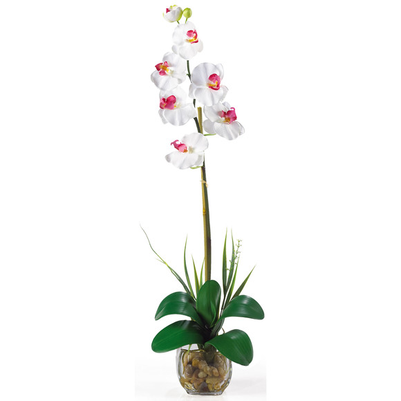 Single Phalaenopsis Liquid Illusion Silk Flower Arrangement - SKU #1104 - 2