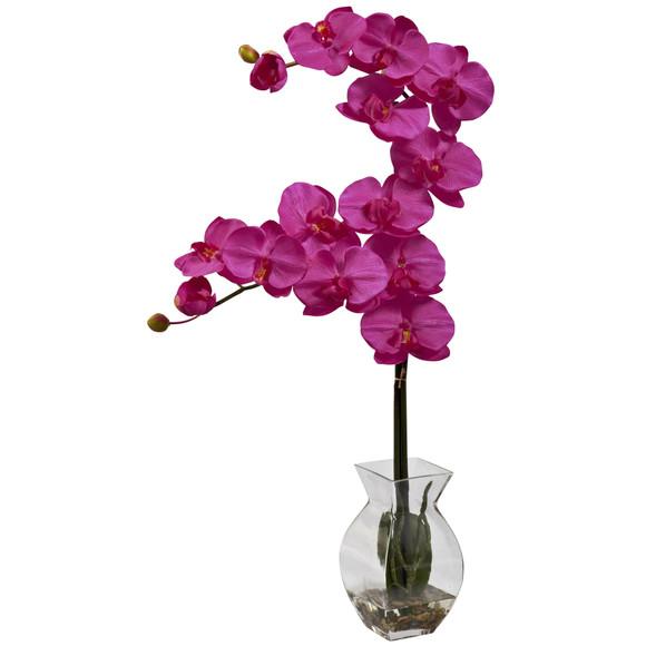 Phalaenopsis Orchid w/Vase Arrangement - SKU #1295