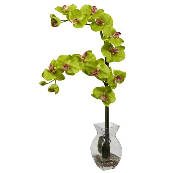 Phalaenopsis Orchid w/Vase Arrangement - SKU #1295 - 7