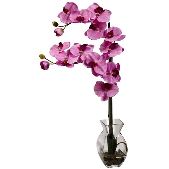 Phalaenopsis Orchid w/Vase Arrangement - SKU #1295 - 6