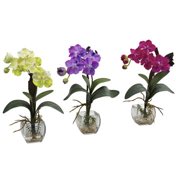 Mini Vanda Orchid Arrangement Set of 3 - SKU #1312-S3