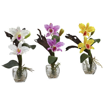 Mini Cattleya Orchid Arrangement Set of 3 - SKU #1321-S3