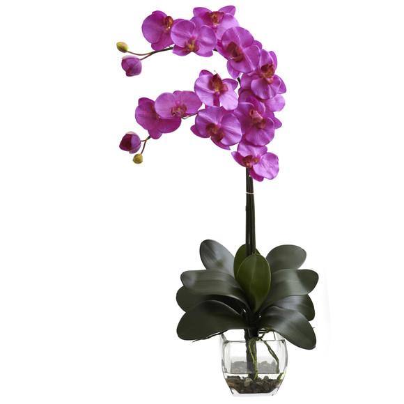 Double Phal Orchid w/Vase Arrangement - SKU #1323