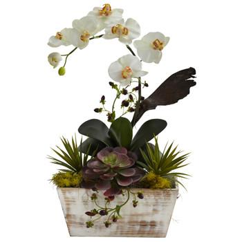 Orchid Succulent Garden w/White Wash Planter - SKU #1326