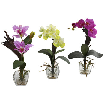 Mixed Orchid w/Cube Arrangements Set of 3 - SKU #1339-S3