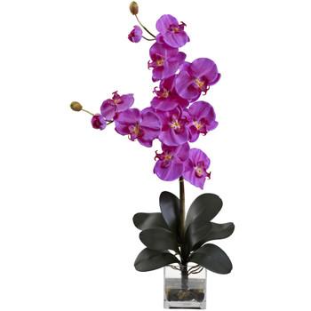 Double Giant Phalaenopsis w/Vase - SKU #1352