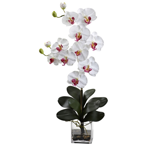 Double Giant Phalaenopsis w/Vase - SKU #1352 - 1