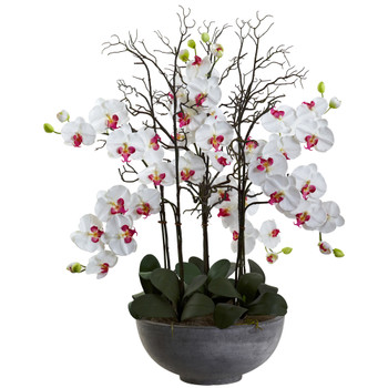 Phalaenopsis Orchid with White Planter - SKU #1362-WH