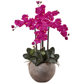 Phalaenopsis Orchid Arrangement with Sand Colored Bowl - SKU #1402