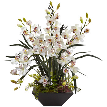 Cymbidium Orchid with Black Vase - SKU #1404