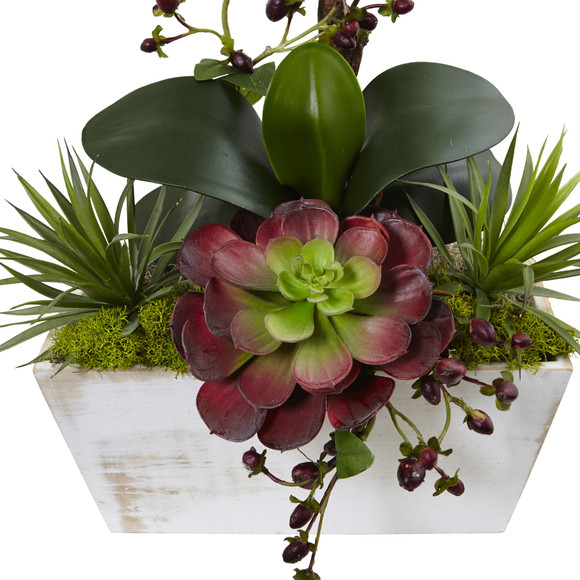 Seasonal Orchid Succulent Garden w/White Wash Planter - SKU #1418-AT - 1