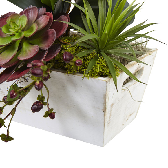 Seasonal Orchid Succulent Garden w/White Wash Planter - SKU #1418-AT - 2