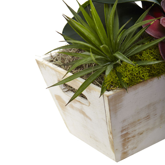 Seasonal Orchid Succulent Garden w/White Wash Planter - SKU #1418-AT - 3