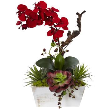 Seasonal Orchid Succulent Garden w/White Wash Planter - SKU #1418-RD