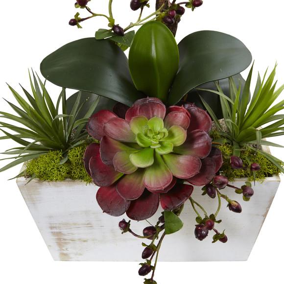 Seasonal Orchid Succulent Garden w/White Wash Planter - SKU #1418-RD - 1