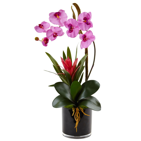 Orchid and Bromeliad in Glossy Black Cylinder - SKU #1437 - 3
