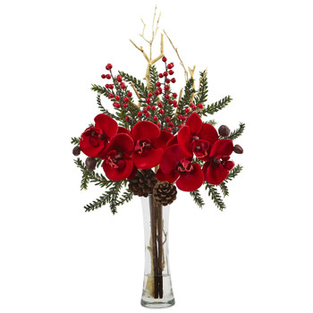 Mixed Orchid Holiday Arrangement with Vase - SKU #1438