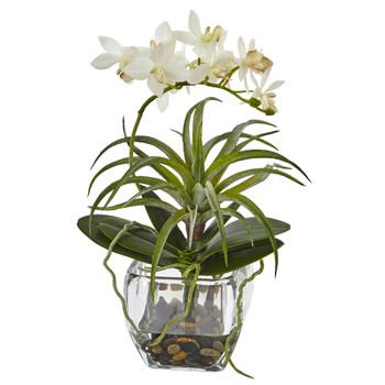 Orchid and Succulent Arrangement - SKU #1443