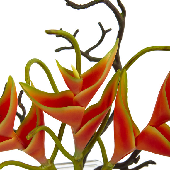 Heliconia in Glass Vase - SKU #1454 - 2