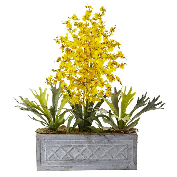 Dancing Lady and Staghorn in Stone Planter - SKU #1457