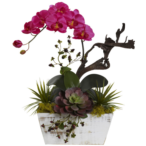 Orchid Succulent Garden with White Wash Planter - SKU #1458