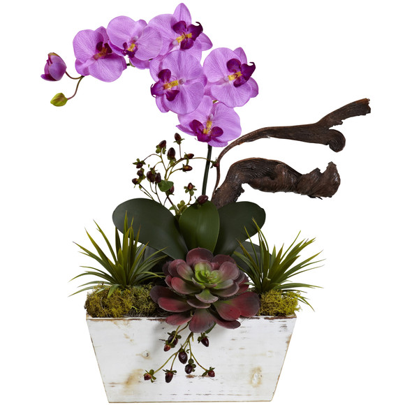 Orchid Succulent Garden with White Wash Planter - SKU #1458 - 4