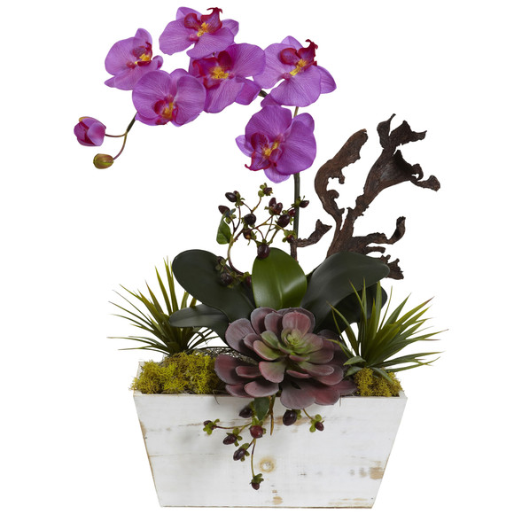 Orchid Succulent Garden with White Wash Planter - SKU #1458 - 1