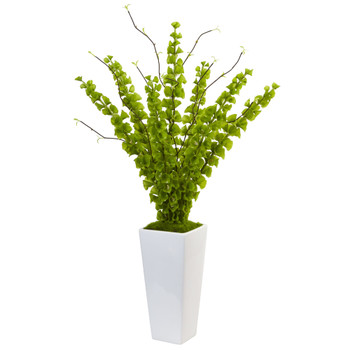 Bells of Ireland in White Planter - SKU #1461