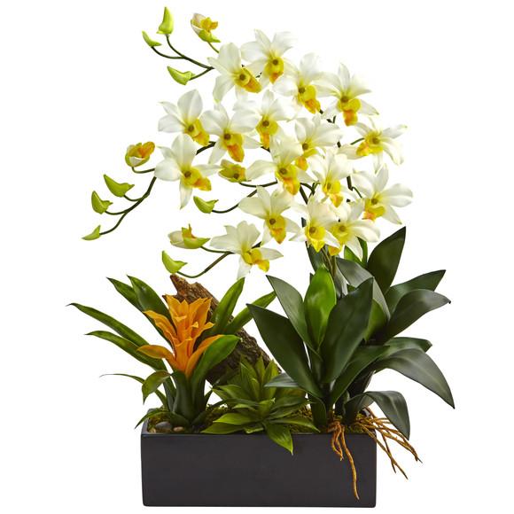 Dendrobium and Bromeliad Arrangement - SKU #1470 - 8