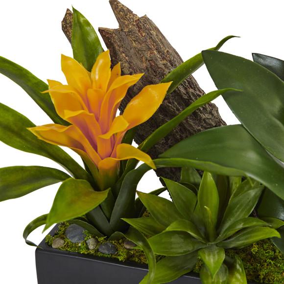 Dendrobium and Bromeliad Arrangement - SKU #1470 - 9