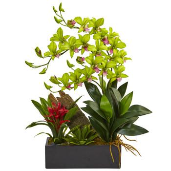 Dendrobium and Bromeliad Arrangement - SKU #1470-GR