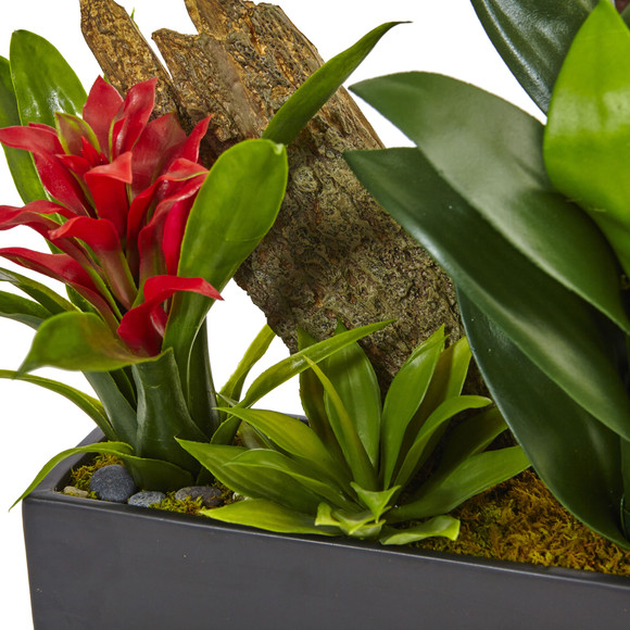 Dendrobium and Bromeliad Arrangement - SKU #1470 - 13