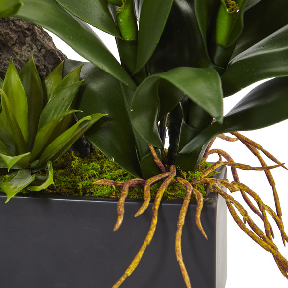 Dendrobium and Bromeliad Arrangement - SKU #1470 - 6