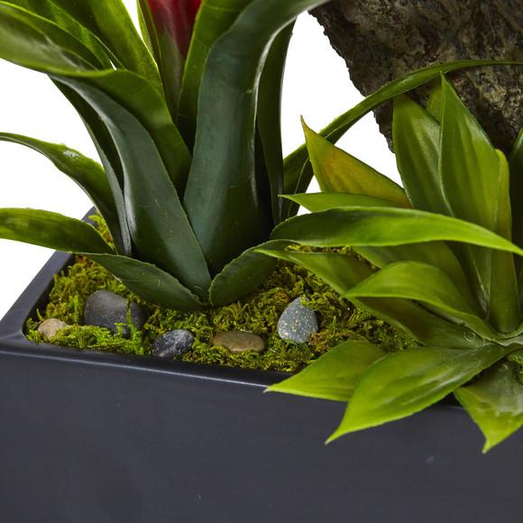 Dendrobium and Bromeliad Arrangement - SKU #1470 - 15