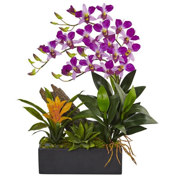 Dendrobium and Bromeliad Arrangement - SKU #1470 - 4