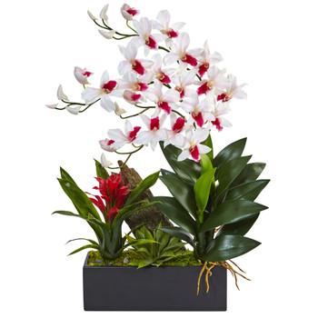Dendrobium and Bromeliad Arrangement - SKU #1470-WH