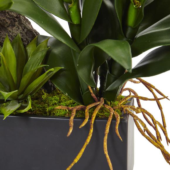 Dendrobium and Bromeliad Arrangement - SKU #1470 - 2