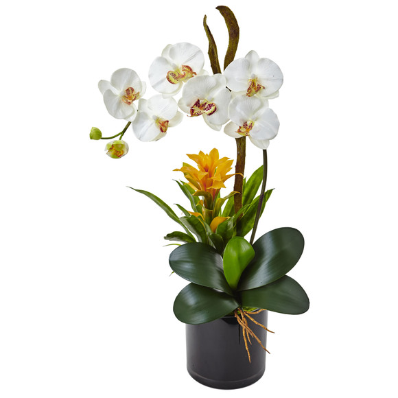 Orchid and Bromeliad in Glossy Black Cylinder - SKU #1478 - 8