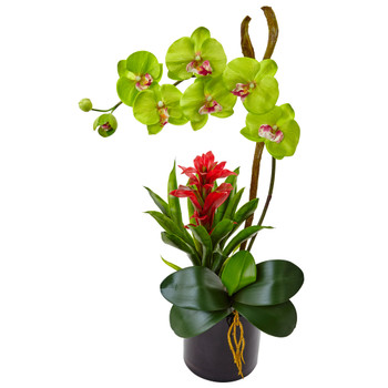 Orchid and Bromeliad in Glossy Black Cylinder - SKU #1478-GR