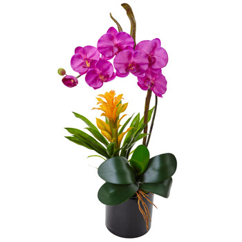 Orchid and Bromeliad in Glossy Black Cylinder - SKU #1478