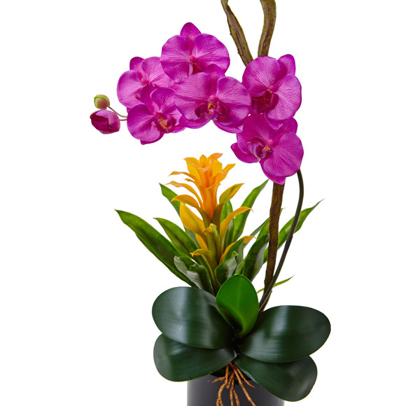 Orchid and Bromeliad in Glossy Black Cylinder - SKU #1478 - 1