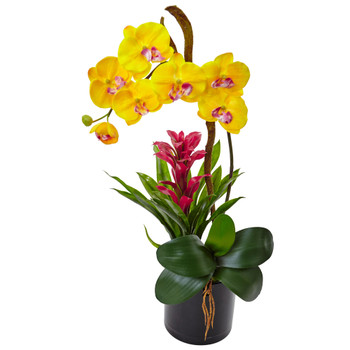 Orchid and Bromeliad in Glossy Black Cylinder - SKU #1478-YL