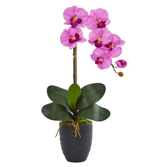 Phalaenopsis Orchid in Black Vase - SKU #1479 - 6