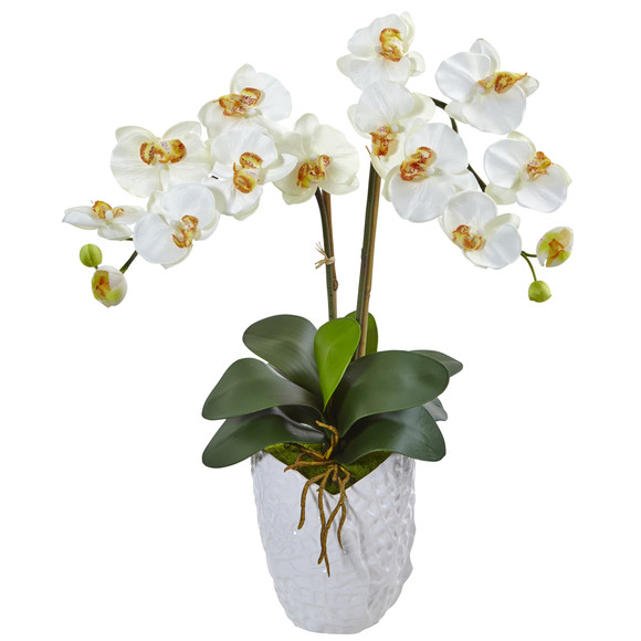 Double Phalaenopsis Orchid in White Vase - SKU #1480 - 4