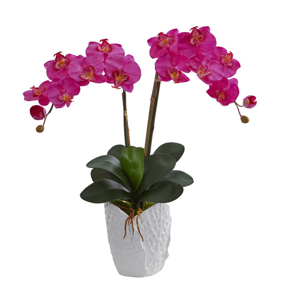 Double Phalaenopsis Orchid in White Vase - SKU #1480 - 2